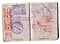 African passport stamps-without-background.jpg