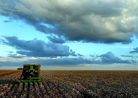 Agriculture in Brazil.jpg