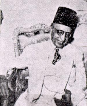 Ahmed Naguib el-Hilaly - Ahmed Naguib el-Hilaly