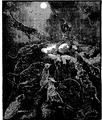 Aimard - Les Chasseurs d'abeilles, 1893, illust page 197.png