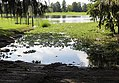 Alligator Lake boat ramp.jpg