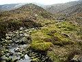 Allt Clachanlaoigh in Loch Ard Forest - geograph.org.uk - 1295234.jpg
