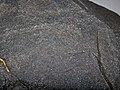 Amphibolite (Willyama Supergroup, Paleoproterozoic; Alexandra Mine, Broken Hill Block, New South Wales, Australia) 2 (26353541481).jpg