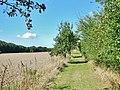 An der ehemaligen innerdeutschen Grenze in der Nähe vom Mechower Holz - panoramio (2).jpg