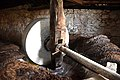 Ancient oil press in olive oil production workshop in Trsteno 06.jpg