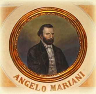 Angelo Mariani (conductor) - Angelo Mariani-portrait in later life