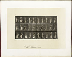 Animal locomotion. Plate 495 (Boston Public Library).jpg