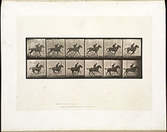 Animal locomotion. Plate 624 (Boston Public Library).jpg