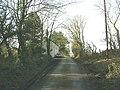 Approaching Bryn Marchog on the edge of Coed Mynydd-mawr - geograph.org.uk - 676235.jpg