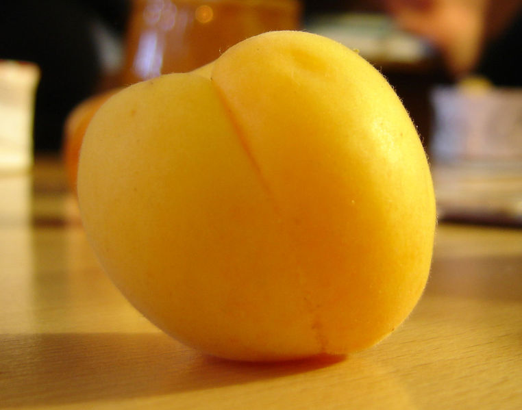 Picha:Apricot fruit.jpg