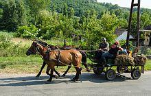 Horse-drawn vehicle - Wikipedia