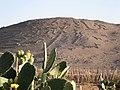 Arica011.jpg
