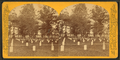 Arlington, Va. (View of rows of white tombstones), by Jarvis, J. F. (John F.), b. 1850.png