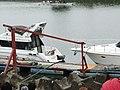 Asaka Tama-chan In Ara River 1.jpg