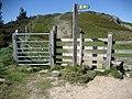 Ascending Penycloddiau - geograph.org.uk - 1329549.jpg