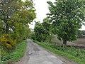 Asymmetric avenue. - geograph.org.uk - 433190.jpg