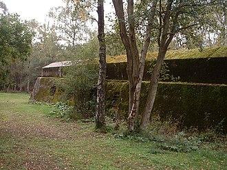 Hankley Common - Image: Atlantic Wall Training, Hankley Common, Undamaged Wall