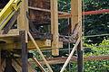 Aufbau der restaurierten Alten Mühle im Hermann-Löns-Park (Hannover) IMG 9313.jpg