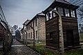 Auschwitz-Birkenau 003.jpg
