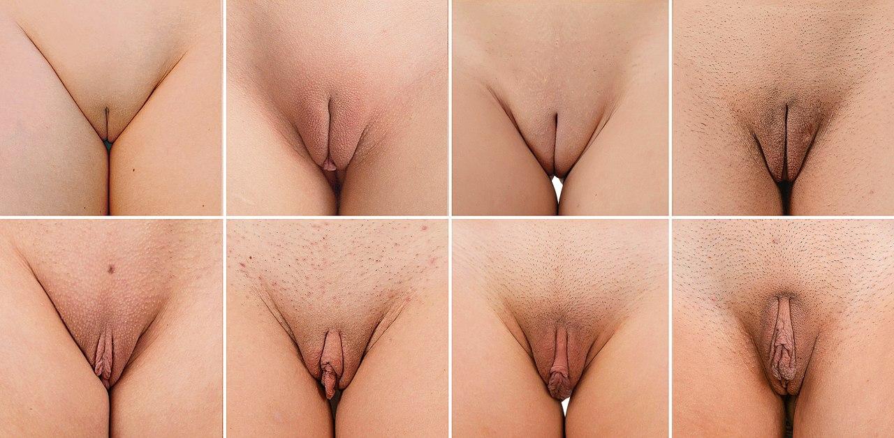 Average breast enlargement cost