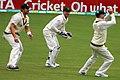 Australia v England (2nd Test, Adelaide Oval, 2013-14) (11287538345).jpg