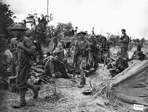 2/12th Battalion (Australia) - Troops from the 2/12th at Sanananda, January 1943