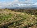 Autumn farmland near Whitehill - geograph.org.uk - 1565113.jpg