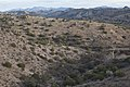 Baker Canyon WSA (9502661555).jpg