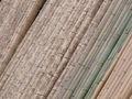 Bamboo Backdrop SaganoArashiyama.jpg