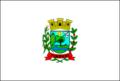 Bandeira Timburi.png