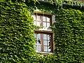 Baneuil château fenêtre à meneau (1).JPG