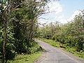 Baratang Andaman 4170091.JPG