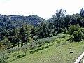 Barga, Province of Lucca, Italy - panoramio - jim walton (27).jpg