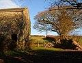 Barn near Efford House - geograph.org.uk - 291501.jpg