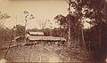 Barombi-Station 1888.jpg