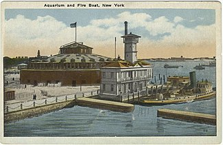 Image Result For New York Aquarium