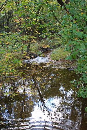 Beaver Run (Catawissa Creek) - Beaver Run looking downstream near Shumans, Pennsylvania, not far from its mouth