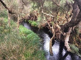 Bennett Brook (Australia)