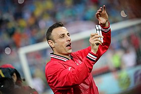 image illustrative de l'article Dimitar Berbatov