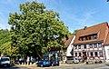 BergstadtlindeBadLauterberg.jpg
