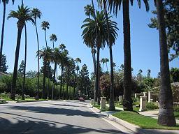 Beverly Hills11