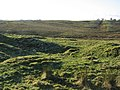 Beyond the west gate of Brocolitia - geograph.org.uk - 1104136.jpg
