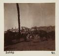 Bild från familjen von Hallwyls resa genom Egypten och Sudan, 5 november 1900 – 29 mars 1901 - Hallwylska museet - 91620.tif