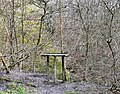 Bird Table in Ernocroft Wood - geograph.org.uk - 1614933.jpg