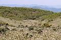 Biwako valley14n.jpg