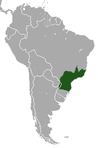 Black Capuchin area.png