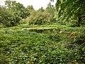 Blick auf den Wasservogelteich September 2015 - panoramio.jpg