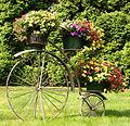 Blumenrad.jpg