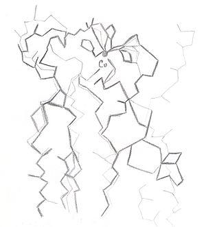 Plastocianina
