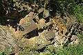 Bochum - Geologischer Garten (08) 03 ies.jpg